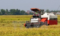 Mekong Sub Region to strengthen agricultural value chain