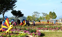 6th Dalat Flower Festival nears