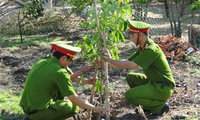 Heritage trees raise awareness over environmental protection