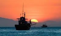 East Sea nations discuss development
