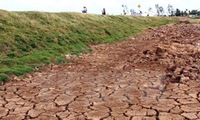 22.5 million USD to support victims of drought and saltwater intrusion