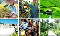 Vietnam and Japan bolster agriculture co-operation