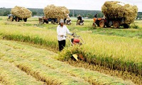 Agriculture sector reviewed after 9 months
