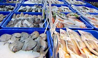 Seafood tested for toxins