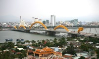 Danang strives to cut red tape