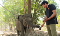 Wildlife rescue effort in Dak Lak