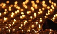 Vesak Day opens in Ninh Binh