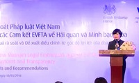 Vietnamese laws reviewed based on EU FTA commitments