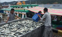 Fishing industry recovery in central provinces
