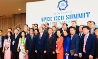 APEC CEO Summit 2017 offers greater opportunities