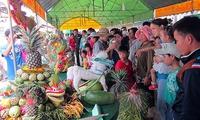 Fruit garden festival opens in Can Tho