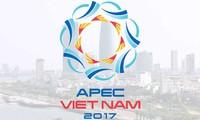 APEC 2017 affirms Vietnam's position and capacity
