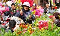 Tet flower markets open in Hanoi