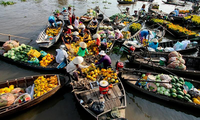 Better living standards for the Mekong Delta