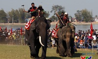 Central highlands's elephant and boat race