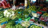 64% of vegetables in Thailand are unsafe