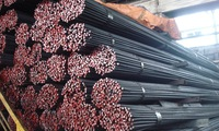 Hoa Phat to build steel plant in Dung Quat