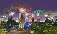 Vietnamese tourist spending in Singapore