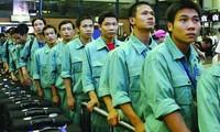 Overseas work opportunities raise questions