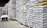 Vietnam's rice exports to Malaysia surge in first five months