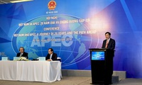 Vietnam's 20-year APEC membership and the path ahead
