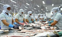 Increasing Tra fish exports to over 2 billion USD