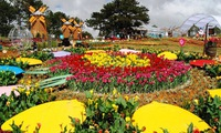 Promoting local specialties through the Da Lat flower festival