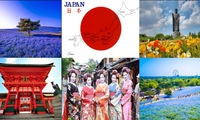 Vietnam - Japan celebrate 45 years of diplomatic ties