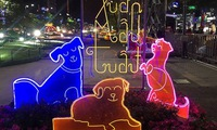 HCMC flower street to celebrate Year of the Dog