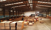 Vietnamese wood products face competition
