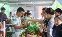 Son La Safe Longan and Agroproduce Week opens in Hanoi