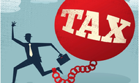 Tax evasion fraud becoming more serious