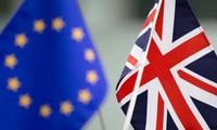 EU's decisions on Britain's Brexit transition