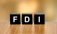 Vietnam promotes cooperation between FDI and domestic sectors