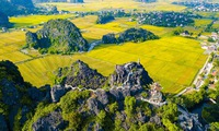 """Yellow Tam Coc - Trang An"" boosts Ninh Binh tourism"