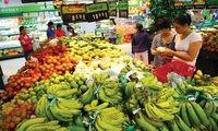 Consumer price index to continue to rise