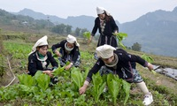 Short-term labour export for people in mountainous areas