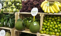 VN to gain $3.6b from vegetable, fruit exports