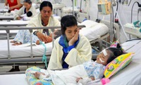 No new influenza virus has been detected in Việt Nam: MoH