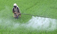 3 weed killer's toxic active ingredients to be banned