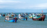 Vietnam's marine development result discussed