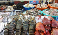 Vietnam eyes Middle East as potential market for seafood