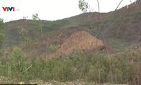 Risk of forest fires in Binh Thuan deemed high