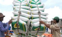 Enterprises promote rice exports through high quality products