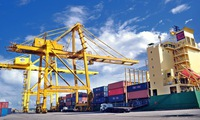Online public services to support import and export activities
