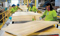Opportunities for Vietnamese wood industry