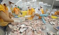 Official exports to China require better production methods for Vietnamese agro-produce