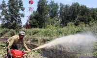 Prevention measures enhanced to handle forest fires