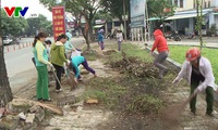 Clean-up campaign launches in Hai Phong