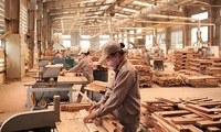 Strengthening control of origin of wood products